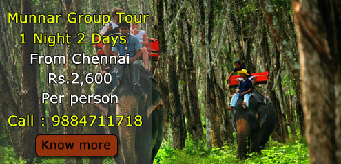 munnar-group-tour